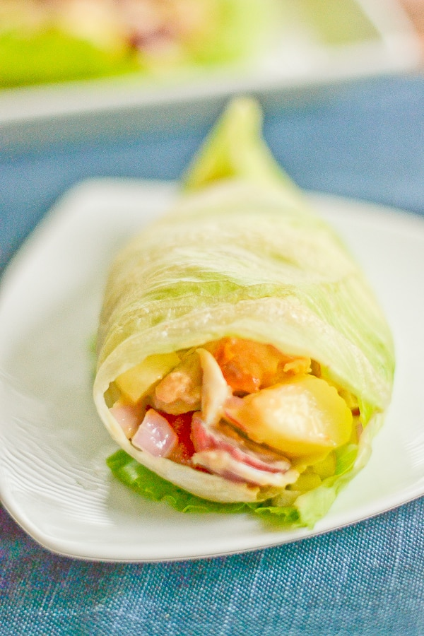 Chicken and Peanut Butter Lettuce Wrap