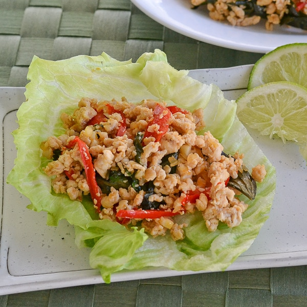 Spicy Thai Basil Chicken - Salu Salo Recipes